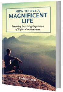 Book Cover: How to Live A Magnificent Life